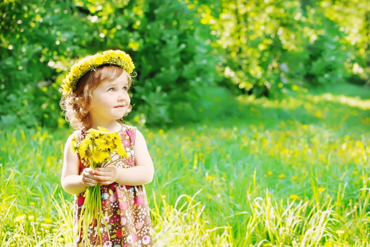 女の子の名前|花がつく名前245例