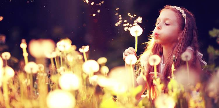 花の名前 【花】がつく名前の願いと名前例