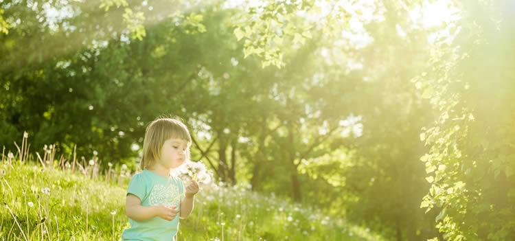 「桜」がつく、花をイメージする二文字名前、三文字名前を紹介いたします。