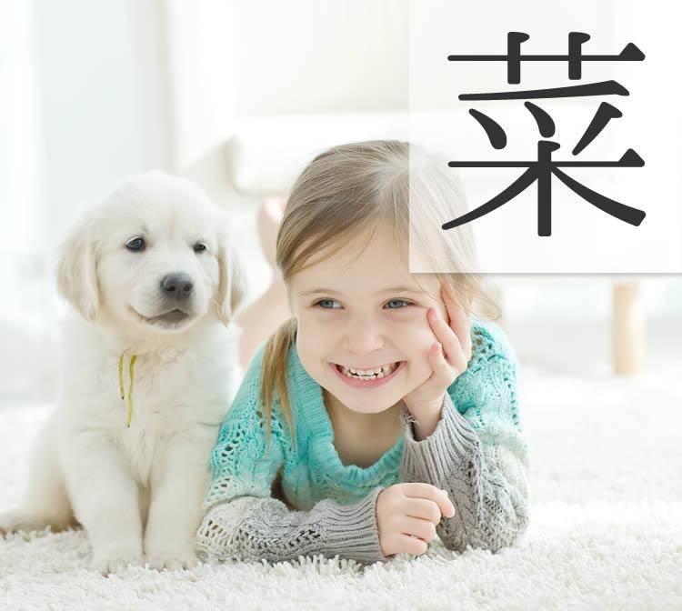 女の子の古風でかわいい名前 人気漢字「菜」