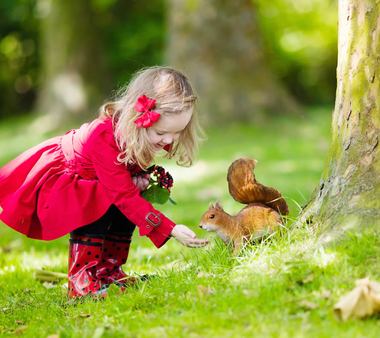 「素直で純粋な心」で幸せになってほしい。そんな願い込められた女の子の名前です