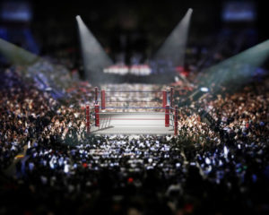 WBSS準決勝井上尚弥がロドリゲスを2回TKO!