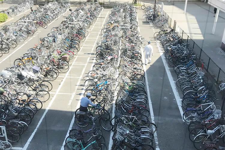 シルバーの方々が自転車を綺麗に整列してくれています。(新潟駅南口仮設第1自転車等駐車場)